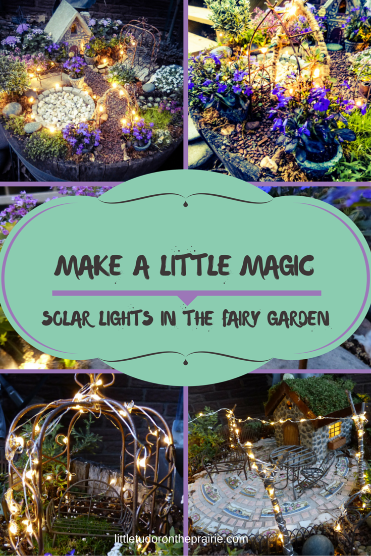 Beau Make A Little Magic Using Solar LED Twinkle Lights In Your Fairy Garden.  Instructions And
