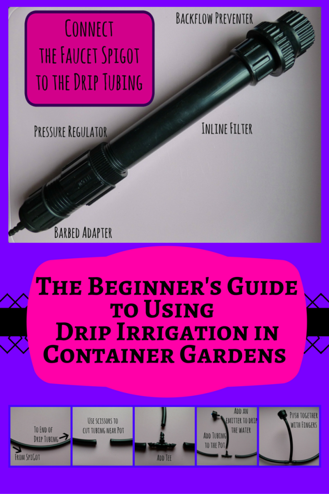 The Beginner's Guide to Using Drip Irrigation in Container Gardens. It's Easy!