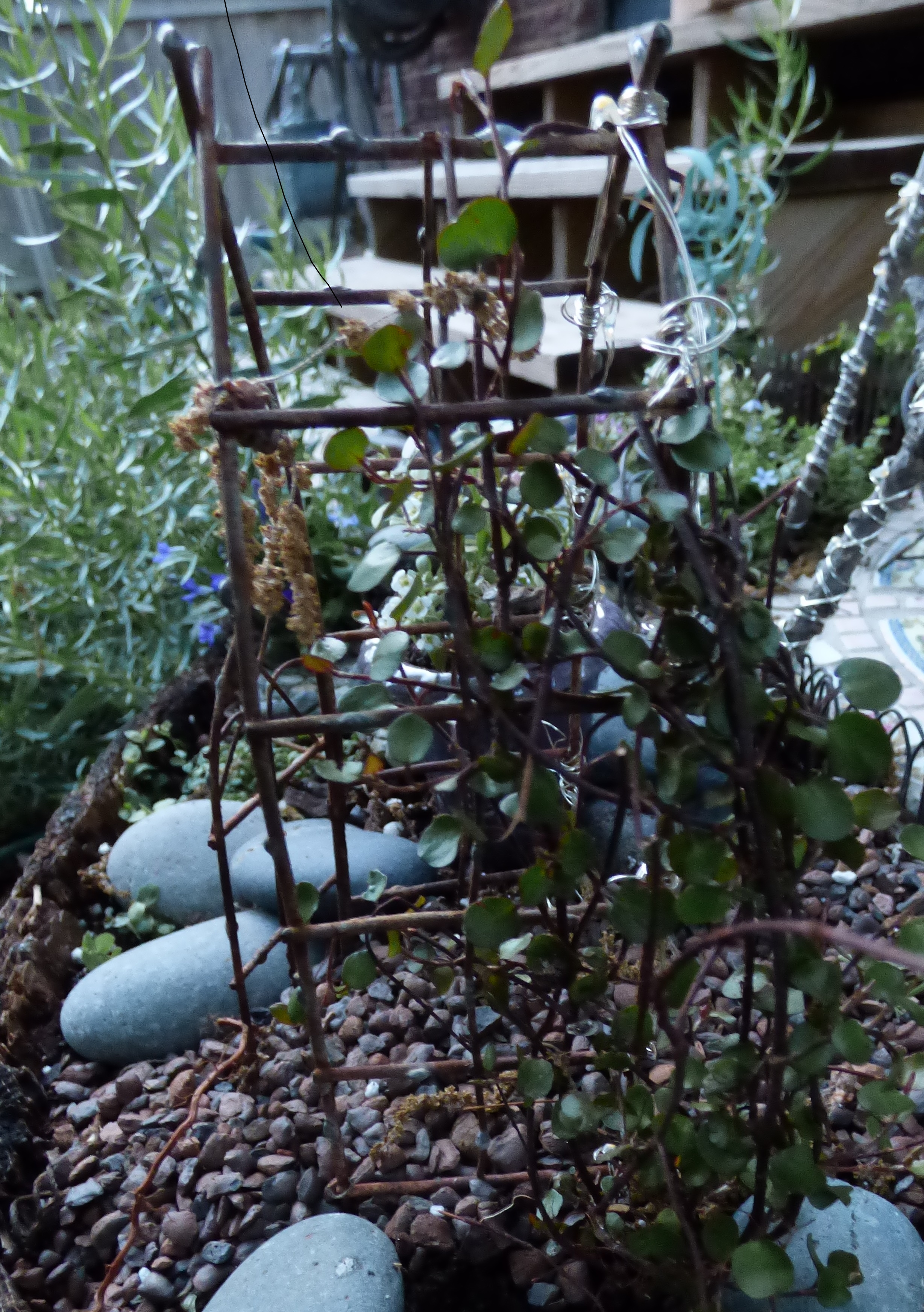 wire vine over trellis | Little Tudor on the Prairie